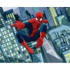Tapet camera copil - Spider Man - detaliu